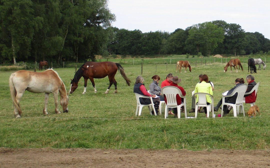 Tweedaagse ondernemerscirkel bij de paarden